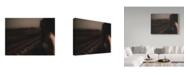 """Trademark Global David Minster 'Blurred Woman' Canvas Art - 19"""" x 2"""" x 14"""""""