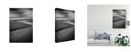 "Trademark Global Costas Economou 'The Serpent' Canvas Art - 30"" x 2"" x 47"""