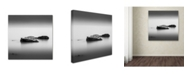 "Trademark Global Dave MacVicar 'Simple' Canvas Art - 14"" x 14"" x 2"""