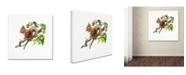 "Trademark Global The Macneil Studio 'Red Squirrel' Canvas Art - 24"" x 24"" x 2"""