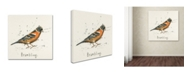 "Trademark Global Michelle Campbell 'Brambling' Canvas Art - 18"" x 18"" x 2"""