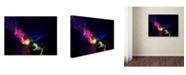 """Trademark Global MusicDreamerArt 'Fiery Welcome' Canvas Art - 24"""" x 18"""" x 2"""""""