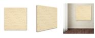 "Trademark Global Yachal Design 'JOY 1000.5' Canvas Art - 35"" x 35"" x 2"""