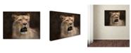 "Trademark Global Jai Johnson 'The Lioness Portrait' Canvas Art - 47"" x 35"" x 2"""