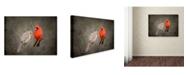 "Trademark Global Jai Johnson 'Together Again' Canvas Art - 24"" x 18"" x 2"""