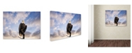 """Trademark Global Jai Johnson 'View From The Top Bald Eagle' Canvas Art - 19"""" x 14"""" x 2"""""""
