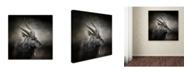 "Trademark Global Jai Johnson 'Waiting For The Storm Nyala Buck' Canvas Art - 35"" x 35"" x 2"""