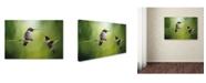 "Trademark Global Jai Johnson 'Wake Up Call Hummingbirds' Canvas Art - 19"" x 12"" x 2"""