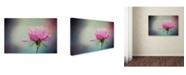 "Trademark Global Jai Johnson 'The Last Pink Rose' Canvas Art - 24"" x 16"" x 2"""