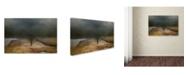 "Trademark Global Jai Johnson 'Winding Missouri Road' Canvas Art - 19"" x 12"" x 2"""