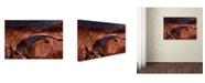"Trademark Global Mike Jones Photo 'Star Trails Diminishing' Canvas Art - 24"" x 16"" x 2"""
