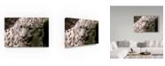 "Trademark Global Robert Michaud 'Snow Leopard' Canvas Art - 24"" x 16"" x 2"""