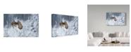 "Trademark Global Milan Zygmunt 'Eagle Owl In Winter' Canvas Art - 32"" x 2"" x 22"""