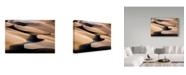 "Trademark Global Mohammadreza Momeni 'Music Dunes' Canvas Art - 24"" x 2"" x 16"""