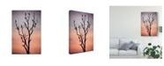 "Trademark Innovations Niklas Rosenkilde 'Before The Sunset' Canvas Art - 16"" x 2"" x 24"""