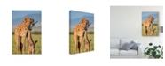 """Trademark Global Mohammed Alnaser 'Mom Love' Canvas Art - 12"""" x 2"""" x 19"""""""