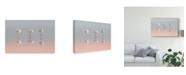 "Trademark Global Natalia Rublina 'Three Flamingos' Canvas Art - 47"" x 2"" x 30"""