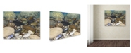 "Trademark Global Stephen Stavast 'Shoreline Treasures' Canvas Art - 24"" x 18"" x 2"""
