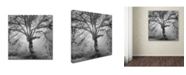 "Trademark Global Moises Levy 'Lightning Tree II' Canvas Art - 35"" x 35"" x 2"""