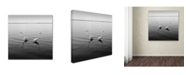 "Trademark Global Moises Levy '2 Herons' Canvas Art - 14"" x 14"" x 2"""