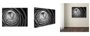 "Trademark Global Moises Levy 'Pozo' Canvas Art - 47"" x 35"" x 2"""