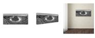 "Trademark Global Moises Levy 'Horseshoe Bend BW' Canvas Art - 32"" x 14"" x 2"""