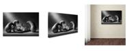 "Trademark Global Victoria Ivanova 'The Mausoleum' Canvas Art - 24"" x 16"" x 2"""