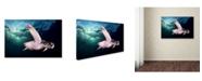 "Trademark Global Sergi Garcia 'Afternoon' Canvas Art - 24"" x 16"" x 2"""