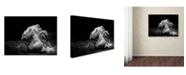 "Trademark Global Cs Tjandra 'In Motion' Canvas Art - 32"" x 24"" x 2"""