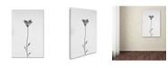 """Trademark Global Shogun 'Daisy' Canvas Art - 19"""" x 12"""" x 2"""""""