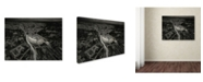 """Trademark Global Stan Huang 'All Roads Lead To Rome' Canvas Art - 24"""" x 18"""" x 2"""""""
