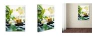 "Trademark Global Johanna 'Zen Orchid And Candle' Canvas Art - 24"" x 18"" x 2"""