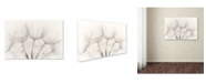 """Trademark Global Jakob Arnholtz 'Untitled' Canvas Art - 19"""" x 12"""" x 2"""""""