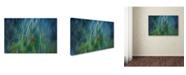"Trademark Innovations Paulo Abrantes 'Electro Shock Blues' Canvas Art - 19"" x 12"" x 2"""