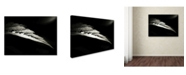 "Trademark Global David Senechal 'Perles Nocturnes' Canvas Art - 32"" x 24"" x 2"""