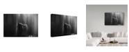 "Trademark Global Oliver Buchmann 'It Always Rains On Me' Canvas Art - 32"" x 2"" x 22"""
