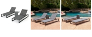Noble House Modesta Outdoor Chaise Lounge, Set of 2