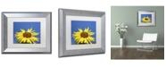 """Trademark Global Kurt Shaffer 'Facing the Sun II' Matted Framed Art - 11"""" x 14"""""""
