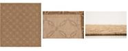 Bridgeport Home Pashio Pas6 Light Brown 6' x 6' Square Area Rug