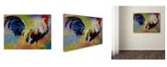 "Trademark Global Marion Rose 'Eye Candy' Canvas Art - 18"" x 24"""
