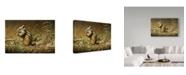 """Trademark Global Ron Parker 'Chipmunk' Canvas Art - 16"""" x 24"""""""