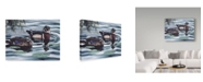 "Trademark Global Rusty Frentner 'Ducks And Lilies' Canvas Art - 18"" x 24"""