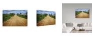 "Trademark Global Incredi 'Dirt Path' Canvas Art - 24"" x 16"""