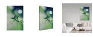 "Trademark Global Incredi 'Waking Up' Canvas Art - 22"" x 32"""