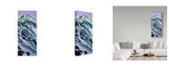 "Trademark Global James W. Johnson 'Grays Peak In Winter' Canvas Art - 14"" x 32"""