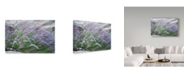 "Trademark Global Janice Sullivan 'Purple Wild Grass Ii' Canvas Art - 19"" x 12"""