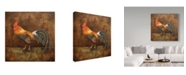 """Trademark Global Jean Plout 'Royale Rooster' Canvas Art - 24"""" x 24"""""""