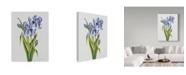 "Trademark Global Jean Plout 'Botanicals 9' Canvas Art - 18"" x 24"""