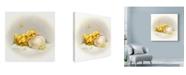 "Trademark Global Peggy Harris 'The Promise' Canvas Art - 14"" x 14"""