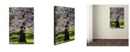 "Trademark Global Kurt Shaffer 'Spring Magnolia' Canvas Art - 30"" x 47"""